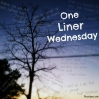 One-Liner Wednesday